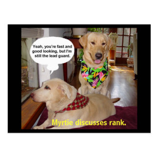 Myrtie discusses rank. postcard