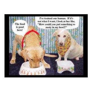 Myrtie y Moses discuten el menú Tarjetas Postales
