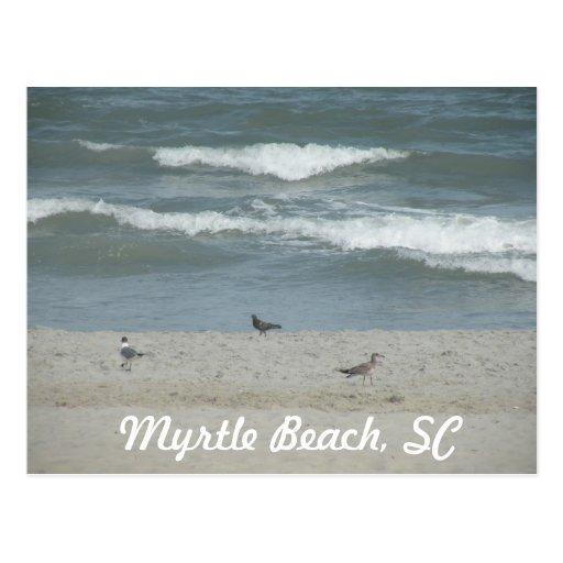 Myrtle Beach, SC Postal