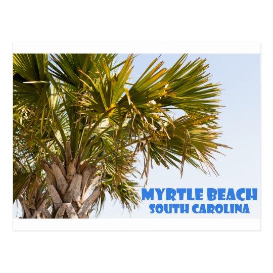 Myrtle Beach South Carolina Palm Tree Vacation Postcard