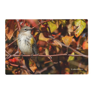 Myrtle Yellow-Rumped Warbler in the Tree Placemat