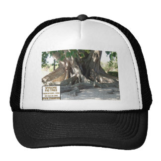 Mysore Fig Tree With Sign Trucker Hat