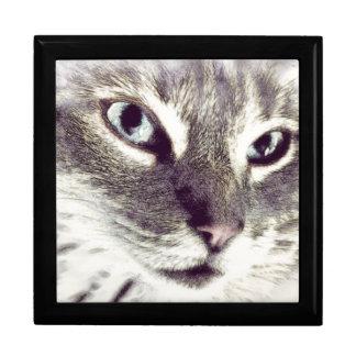 Mysterious Cat Face Keepsake Box