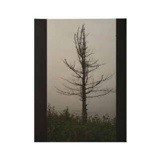 Mysterious Lone Tree Silhouette Wood Poster