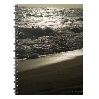 Mysterious sea notebook