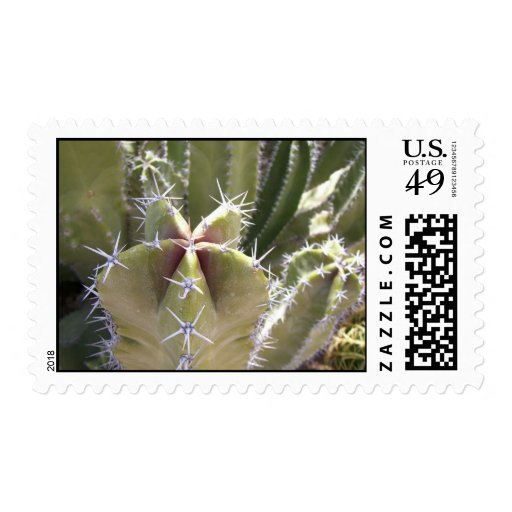 Mystery Cactus (1) Postage Stamps