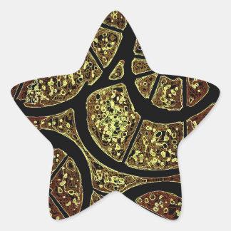 Mystery Shells Star Sticker