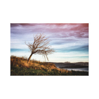 Mystic colorful landscape and crooked tree canvas print
