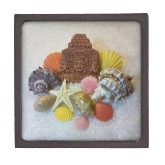 Mystic Energy Seashells and Starfish Gift Box Premium Jewelry Box