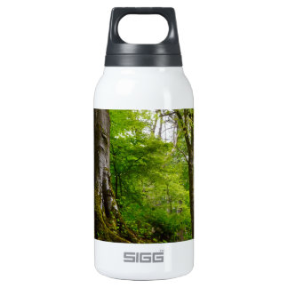 Mystic Forset Insulated Water Bottle