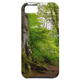 Mystic Forset iPhone SE/5/5s Case