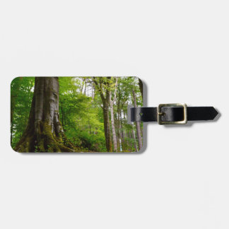 Mystic Forset Luggage Tags