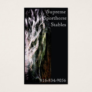 Mystic Friesian Business Card