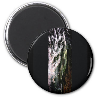 Mystic Friesian 2 Inch Round Magnet