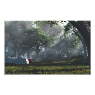 Mystic Grove Photoprint Photo Print