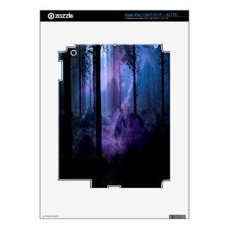 Mystic Night iPad 3 Skins