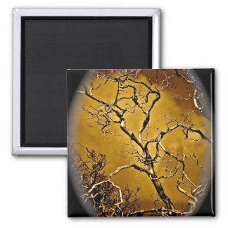 Mystic tree branches in antique vignette magnet