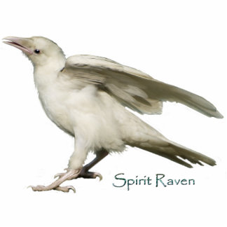 Mystic White Raven Wildlife Sculpted Gift Item Standing Photo Sculpture