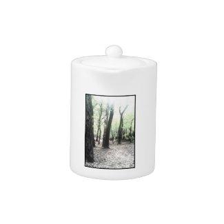 Mystic Woods TeaPot