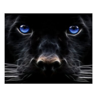 Mystical Blue Eyed Cat Poster