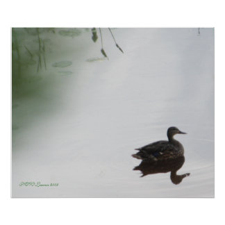 Mystical Duck Poster