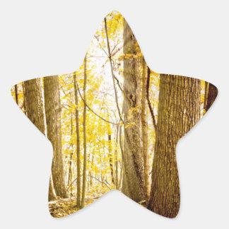 Mystical Forest Star Sticker