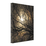 Mystical Moon Canvas Prints