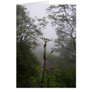 Mystical Morning Greeting Card