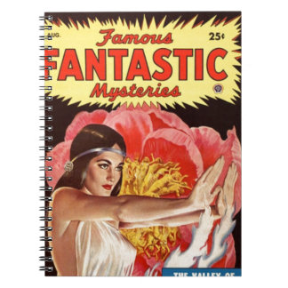 Mystical Priestess Notebook