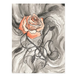 Mystical Rose In Darkness Post Cards