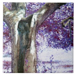 Mystical Tree Ceramic Tile