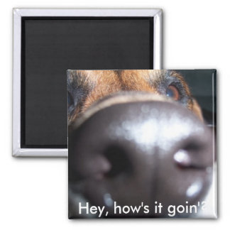 n1012436597_30038071_5113, Hey, how's it goin'? 2 Inch Square Magnet