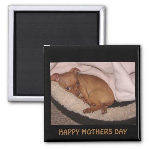 n1033590036_30076141_3289, HAPPY MOTHERS DAY Fridge Magnet