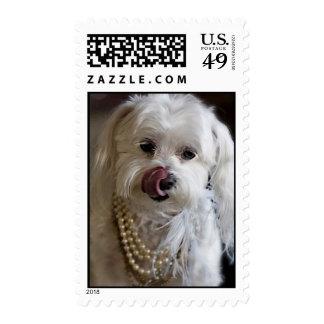 n1159325899_30299794_5142 sello postal