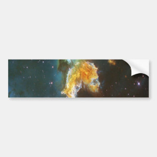 N63A Lady of the night sky Bumper Sticker