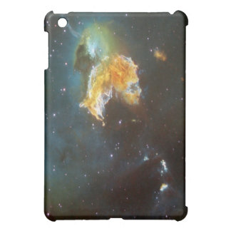 N63A Lady of the night sky iPad Mini Cases