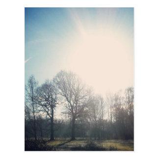 N (2).jpg postcard
