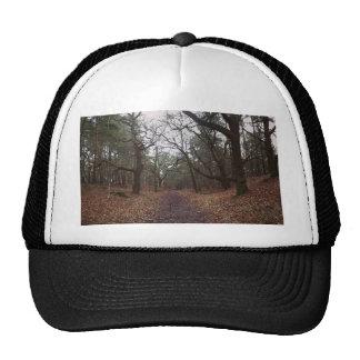 N (3).jpg trucker hat