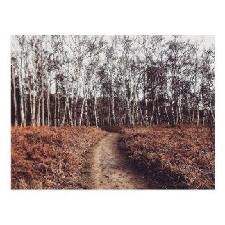 N (4).jpg postcard