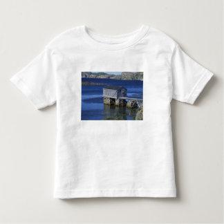 N.A., Canada, Newfoundland, Durrell. Fishing Toddler T-shirt