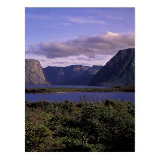 N.A., Canada, Newfoundland, Gros Morne National 2 Postcard