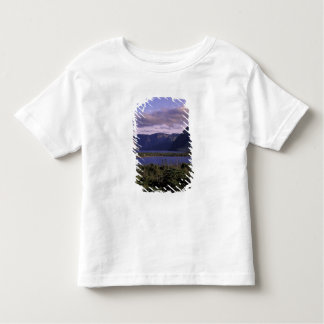 N.A., Canada, Newfoundland, Gros Morne National 2 Toddler T-shirt
