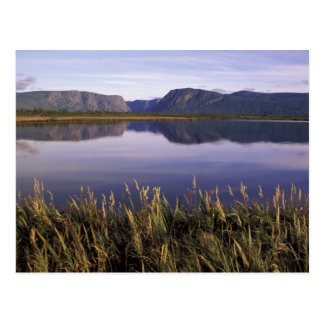 N.A., Canada, Newfoundland, Gros Morne National Postcard