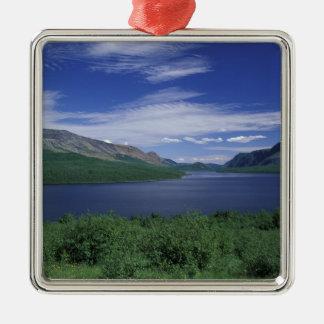 N.A., Canada, Newfoundland, Grose Morne Trout Metal Ornament