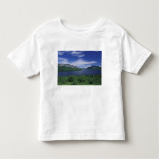 N.A., Canada, Newfoundland, Grose Morne Trout Toddler T-shirt