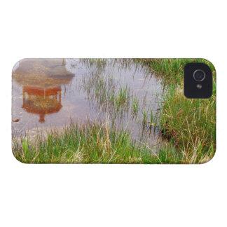 N.A. Canada, Nova Scotia, Peggy's Cove. Case-Mate iPhone 4 Case