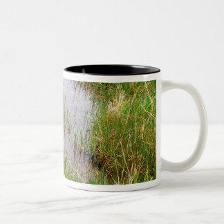 N.A. Canada, Nova Scotia, Peggy's Cove. Two-Tone Coffee Mug