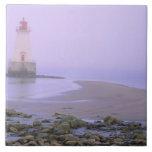 N.A. Canadá, Nueva Escocia, condado de Shelburne.  Azulejo Ceramica