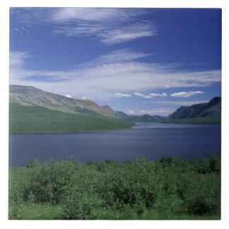 N.A., Canadá, Terranova, trucha de Grose Morne Azulejo Cuadrado Grande