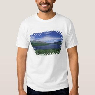 N.A., Canadá, Terranova, trucha de Grose Morne Playeras
